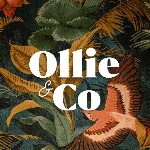 Ollie & Co